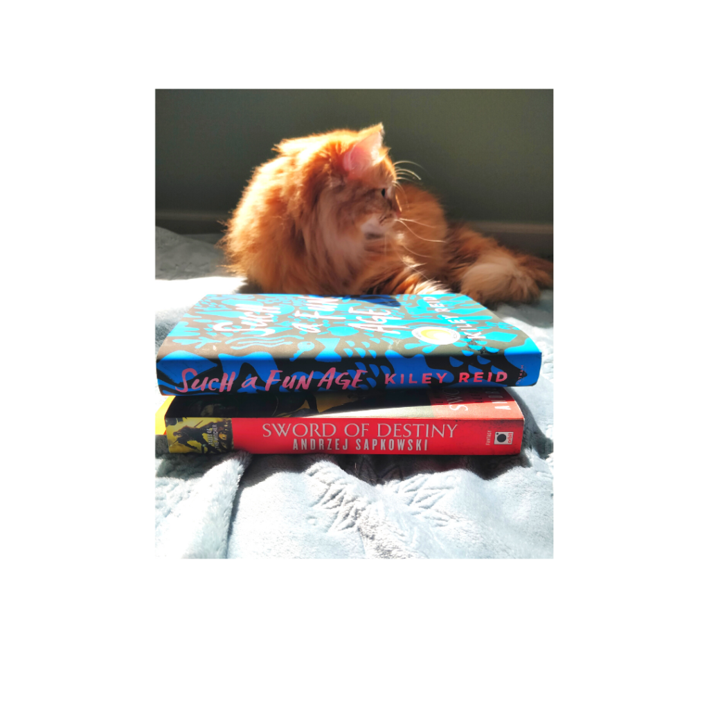 catwithbooks